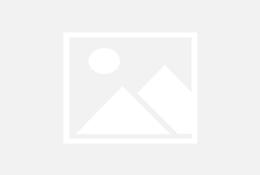 valentina castro en 4 porno chileno